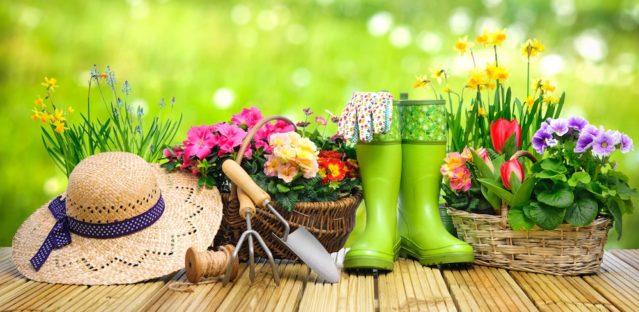 5 Tips To Minimize Gardening Injuries